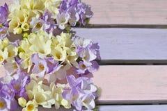 Pastelowy fuschia na wieśniak menchii drewnianym tle Zdjęcie Royalty Free