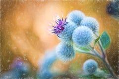 Pastelowy obrazu kwiat - kwitnąć Wielkiego łopian Zdjęcia Stock