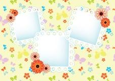 Pastelowy tło z koronkowymi ramami Obraz Royalty Free