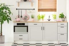 Pastelowych menchii czajnik w pięknym kuchennym wnętrzu z, niecka i zlew okno z storami i prostymi, białymi spiżarniami, zdjęcia stock