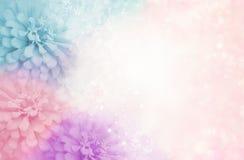 Pastelowych menchii kwiatu purpurowa błękitna rama na miękkim bokeh rocznika tle Obraz Stock