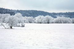 Pasterka village in snow – winter in Poland Royalty Free Stock Image