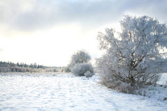 Pasterka village in snow � winter in Poland Royalty Free Stock Image