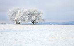 Pasterka village in snow � winter in Poland Stock Image