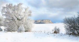 Pasterka village in snow – winter in Poland Stock Image