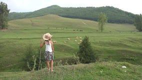 Pasterski dziecko z Pastwiskowymi caklami na polu w górach, kraj dziewczyna Plenerowy 4K zbiory