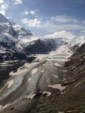 pasterze ледника стоковые фото