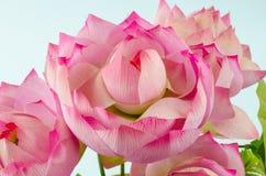 Pastic装饰莲花在白色背景的 免版税库存照片