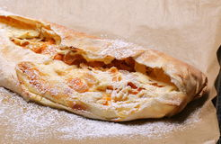 Pasticceria dello strudel del formaggio e dell'albicocca Fotografia Stock