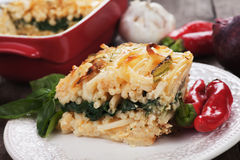 Pasticcio with chard and zucchini Stock Images