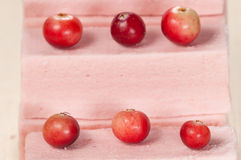 Pastille with cranberry. Close up shot, local focus Stock Photo