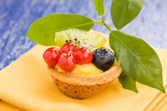 Pastires with blueberries and currants Royalty Free Stock Photos