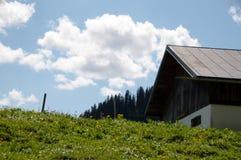 Pasto alpestre Imagen de archivo libre de regalías
