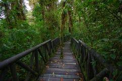 PASTO, COLOMBIA - JULI 3, 2016: La-park van de cotora is het nationale aard het park van de smalles nationale aard in Colombia Royalty-vrije Stock Afbeeldingen