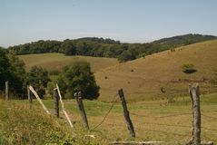 Pasto da montanha Imagem de Stock