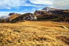 Pasto da montanha no mar dos reis em Berchtesgaden Fotos de Stock Royalty Free