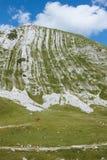 Pasto das montanhas Imagens de Stock Royalty Free