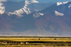 Pasto de la montaña foto de archivo libre de regalías