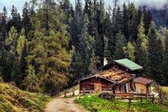 Pasto de la montaña en el mar de reyes en Berchtesgaden Imágenes de archivo libres de regalías