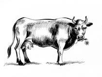 Pasto de la vaca ilustración del vector