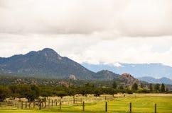Pasto de Rocky Mountains Imágenes de archivo libres de regalías