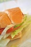 Pasto del panino del sottopassaggio Fotografie Stock
