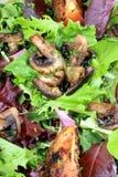 Pasto dell'insalata Fotografia Stock