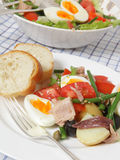 Pasto dell'insalata di Nicoise Immagine Stock