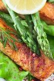 Pasto di color salmone dell'asparago Immagini Stock Libere da Diritti