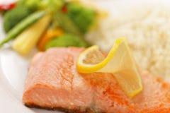 Pasto di color salmone a macroistruzione del raccordo Immagini Stock