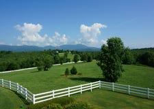 Pasto do cavalo em South Carolina Fotografia de Stock Royalty Free