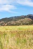 Pasto e montanhas Fotos de Stock Royalty Free