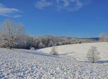 Pasto e montanhas da paisagem do inverno Fotos de Stock Royalty Free
