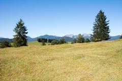 Pasto en las montan@as Imagen de archivo libre de regalías