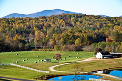 Pasto/feno/montanhas/outono imagens de stock