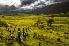 Pasto fresco verde com cerca On Isle Of Skye In Scotland do ferro imagem de stock royalty free