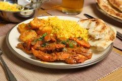 Pasto indiano del curry Immagine Stock