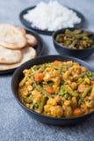 Pasto indiano vegetariano fotografia stock libera da diritti