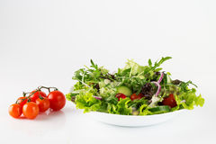 Pasto organico, insalata fresca in un piatto Fotografia Stock