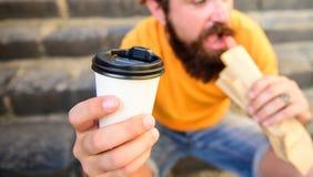 Pasto rapido per pranzo Tazza di carta della bevanda della tenuta del hot dog del morso dei pantaloni a vita bassa L'uomo barbuto fotografia stock libera da diritti