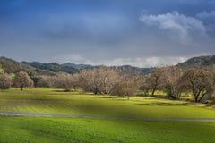 Pasto rural Fotos de archivo libres de regalías