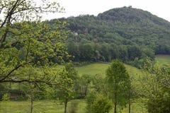 Pasto rural del fam de la montaña occidental del NC Imagen de archivo libre de regalías