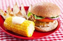 Pasto sano di picnic Fotografia Stock Libera da Diritti