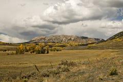 Pasto y montañas del otoño de Colorado foto de archivo