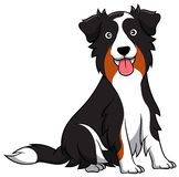 Pastor australiano Cartoon Dog ilustração stock