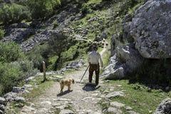 Pastor con las ovejas de los hios en España Imagen de archivo libre de regalías