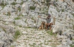 Pastor de las ovejas con su perro Imagenes de archivo