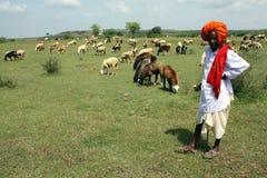 Pastor indio foto de archivo libre de regalías