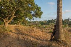 Pastor joven que toma el cuidado de cabras en Kenia Imagenes de archivo