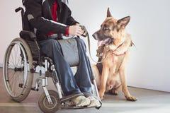 Pastor, perro del servicio con el dueño imagenes de archivo